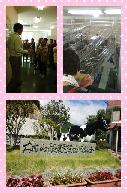 大内山牛乳 工場見学